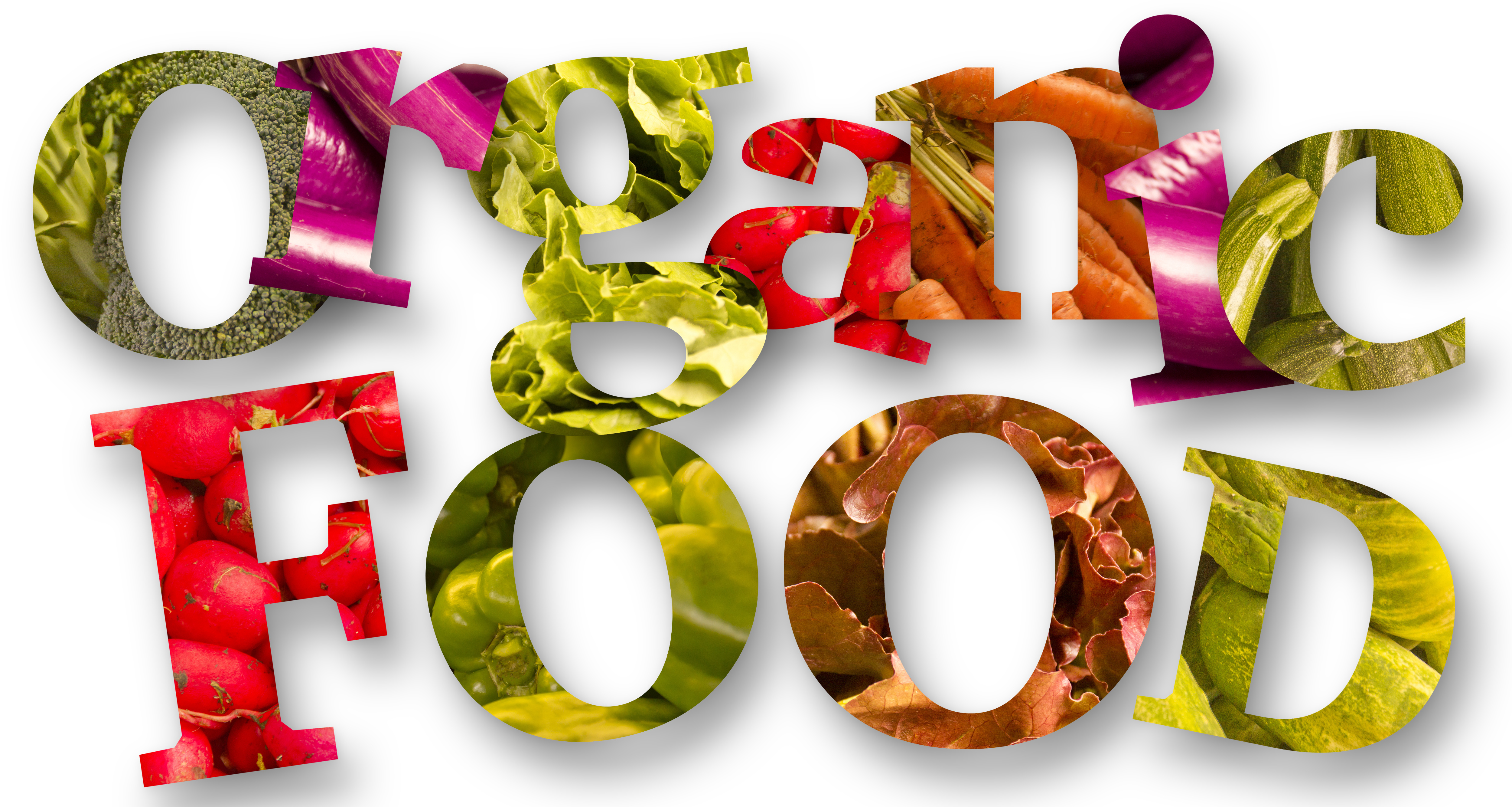 Organic Food Graphic North Coast Organic