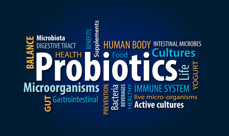 Probiotics Helping to Lead a Healthy Lifestyle