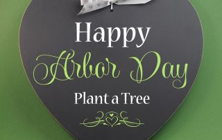 Celebrating National Arbor Day