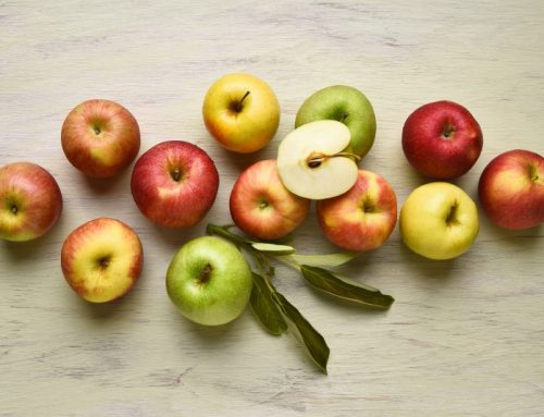 The Many Varietals of the Apple